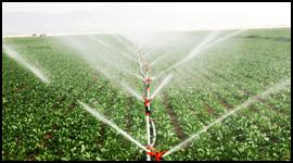Irrigazione agricola area esterna Fontane interventi di ingegneria naturalistica outdoor