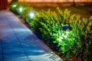 Illuminazione - interventi di ingegneria naturalistica outdoor